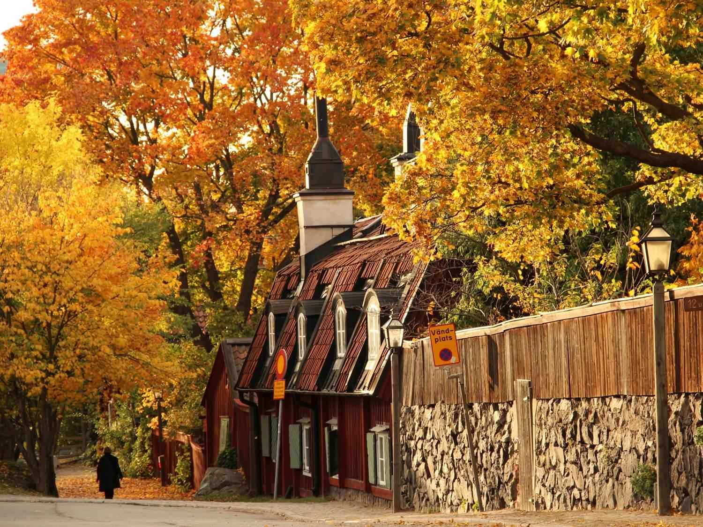 Autumn colors in Stockholm
