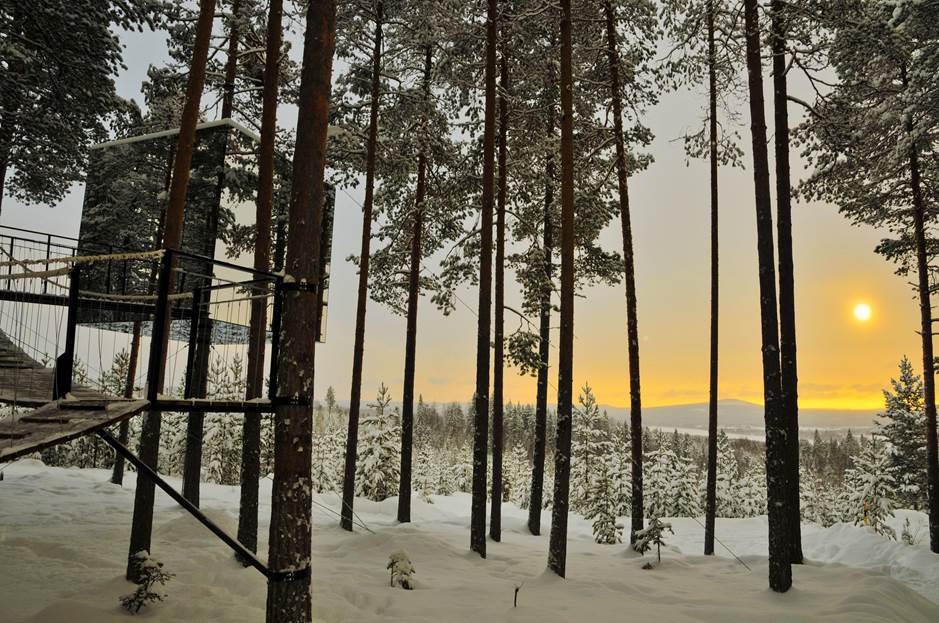 Tree hotel in Swedish Lapland